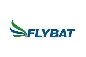 https://www.ewa-work.de/web-entwicklung/batterie/wp-content/uploads/2018/09/Flybat-300x200.jpg